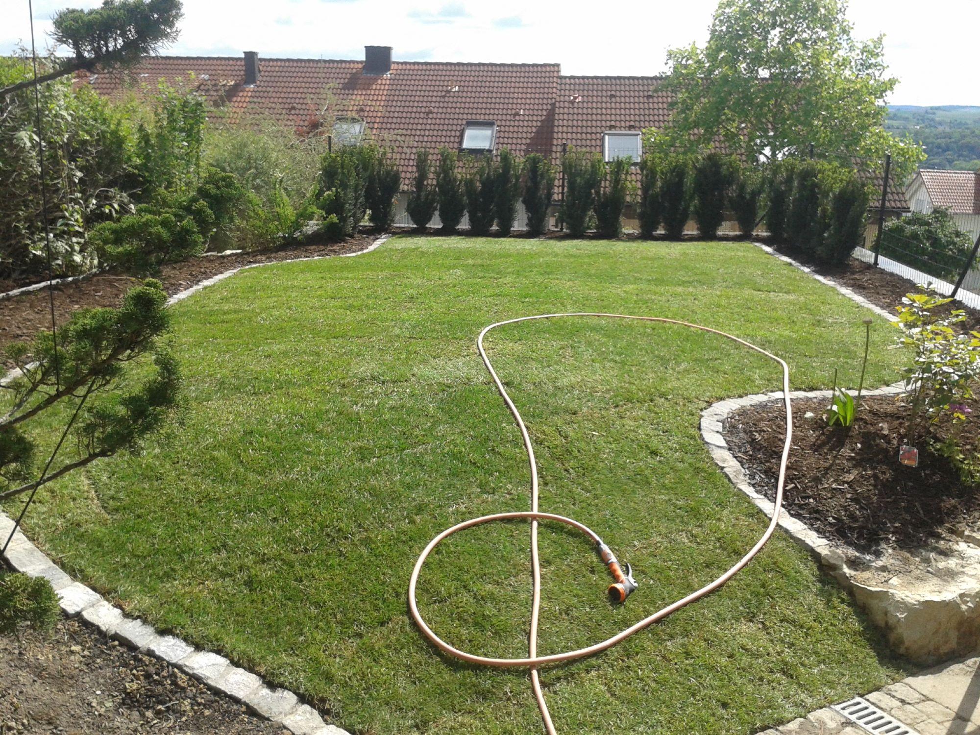 Gartengestaltung gruentec gmbh for Gartengestaltung mit buchs und hortensien